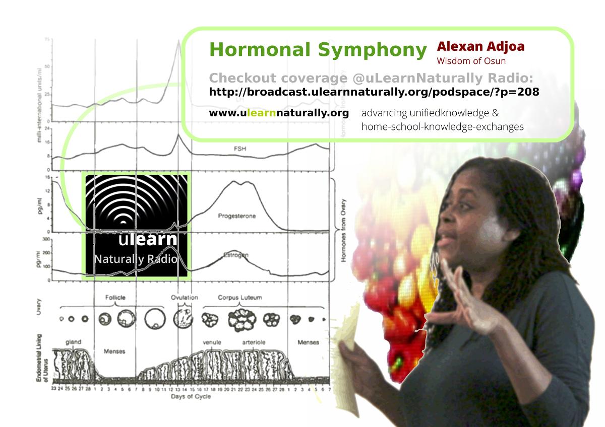 alexan_adjoa_-_restoring_hormonal_harmony_and_symphony_-_ulnr_banner_v2