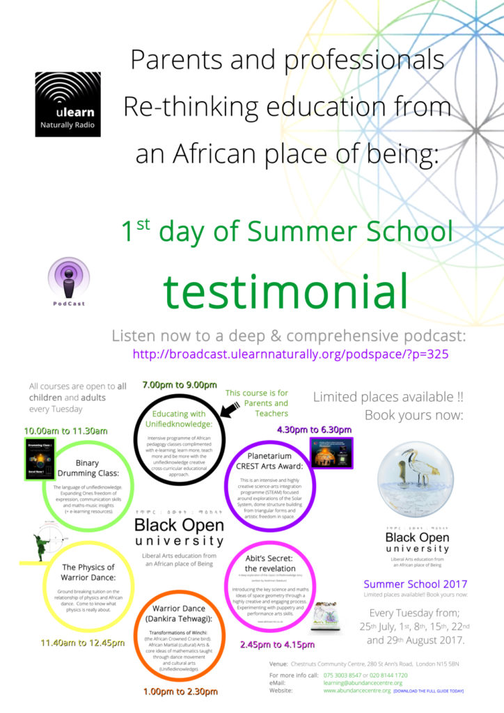 Parents and professionals - Re-thinking education from an African place of being - 1st day of Summer School testimonial